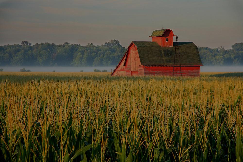 farm and crop insurance Mendon IL